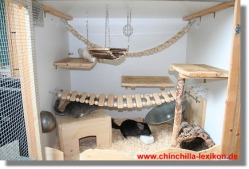 Chinchilla Cage Ideas Little P A W S